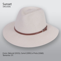 4451 - Chapéu aba média Sunset